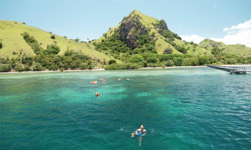 snorkeling di manta point